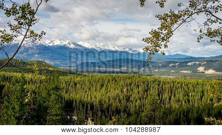 Athabasca River Valley in Jasper National Park