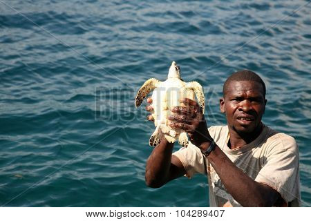 LABADEE, HAITI - SEPTEMBER 27, 2015: A fisherman holds up a green sea turtle he has caught to sell or eat for dinner off the waters of Labadee, Haiti. September 27, 2015