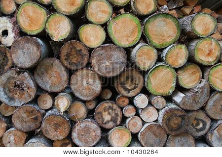 Green Wood Log Pile