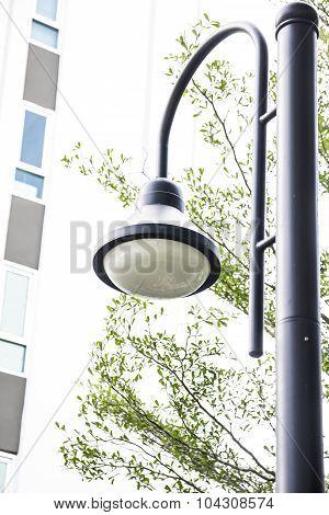 Close Up Street Lamp Post