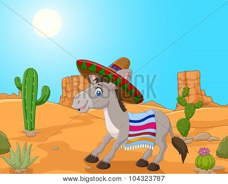 Mexican donkey wearing a sombrero and a colorful blanket.