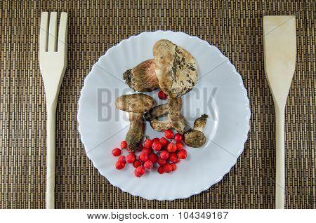 Mushrooms and rowan