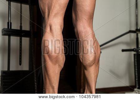 Training Strong Legs Calf