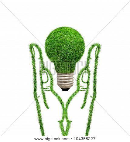 Green Grass Lamp In Hands.