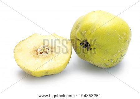 Portugal Quince Or Pear Quince (cydonia Oblonga) Isolated On White
