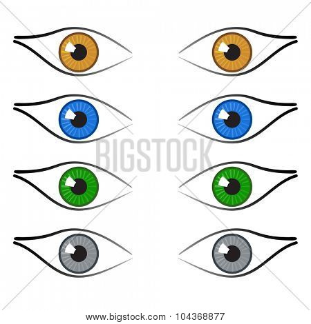Brown, blue, green and grey color eyes