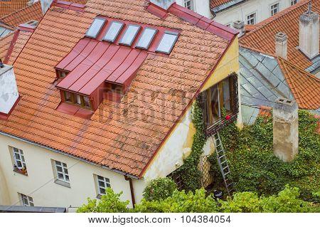 Old house, overgrown vineyard, Prague
