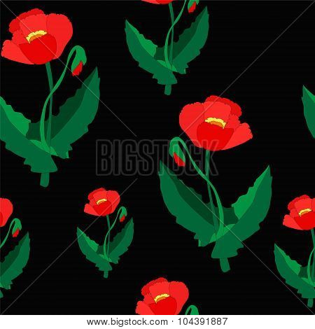 Seamless Flower Pattern. Poppy. Illustration