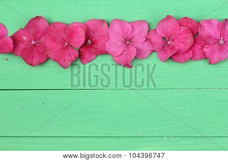 Floral pink on green