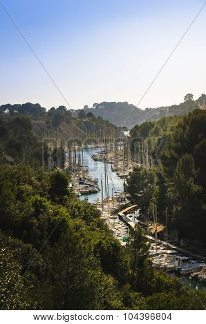 Arbor And Boats Of Port-miou, Cassis, France