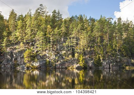 Forest On Top Of A Cliff Aside Lake