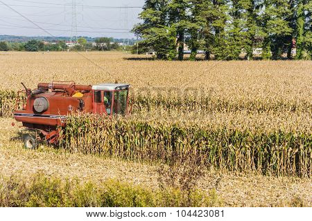 Combine Harvester During Harvesting Corn
