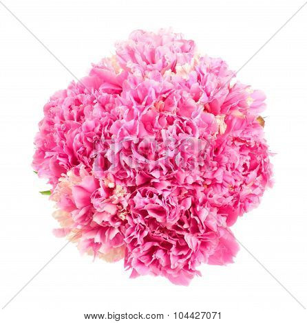 Bouquet Of Pink Peonies