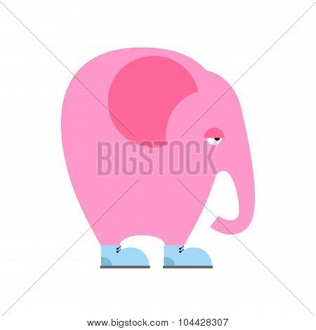 Big Pink Elephant In  Shoes. Sad Animal With Trunk And Big Ears. Fantastic Romantic Beast