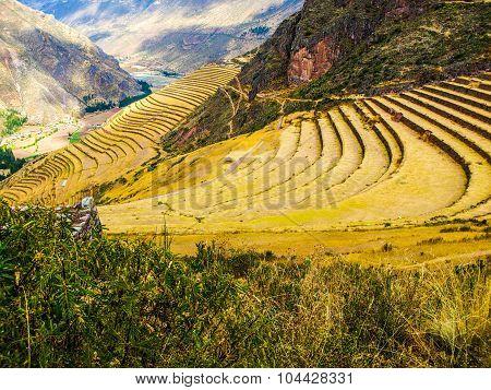 Incan terraces in Pisac