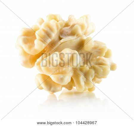 Walnut Nucleus Isolated On The White Background