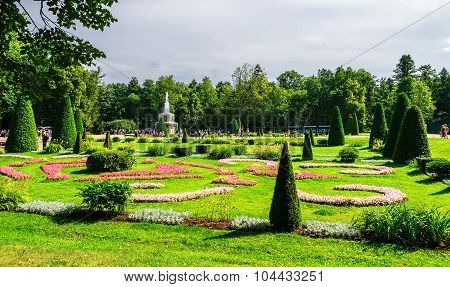 Down Park At Peterhof
