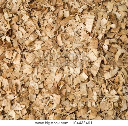 Heap Of Wooden Sawdust Closeup