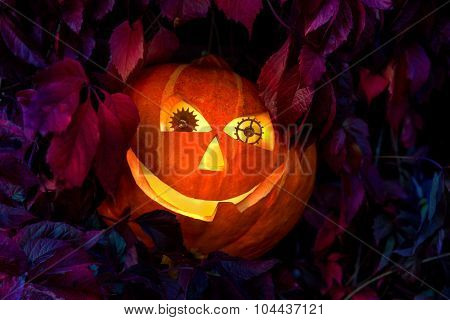 Halloween pumpkin with eyes made of clock gears, among the leaves of wild grapes