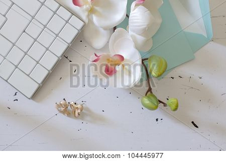 Beautiful Orhid Flower On White Office Table, Top View