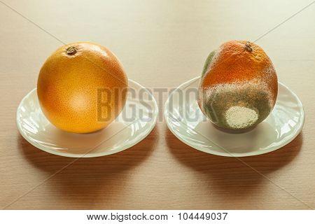 Ripe And Moldy Grapefriut.