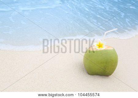 Tropical Coconut Refreshment
