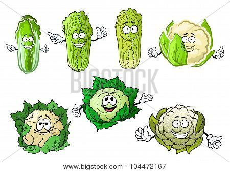 Cartoon cauliflowers and chinese cabbage