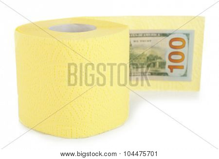 Roll of light yellow toilet paper and euro banknote isolated on white