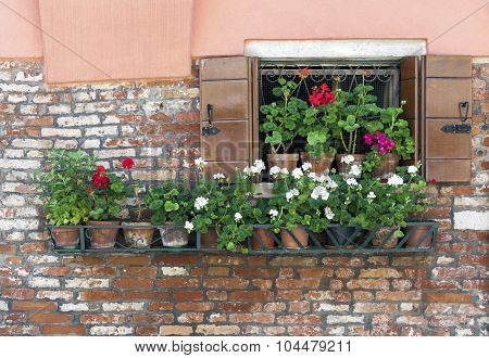 Open Window With A Row Of Flower Pots
