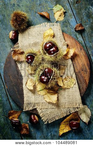 Autumn concept with Chestnuts and leaves on wooden board