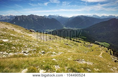 alpine meadow