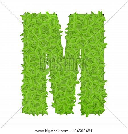 Uppecase letter M consisting of green leaves
