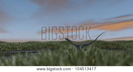 coelophysis running in grassland