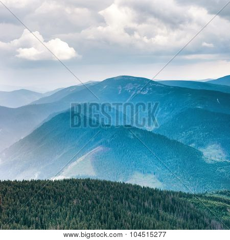 Blue Mountains Covered With Green Forest