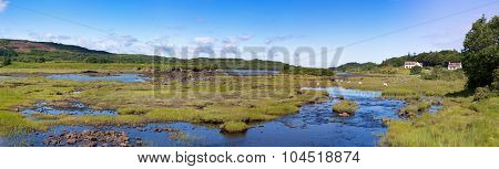 A panorama of sheep grazing on the wetlands of the Island Community of Mull, Isle of mull, Inner Hebrides, Scotland.