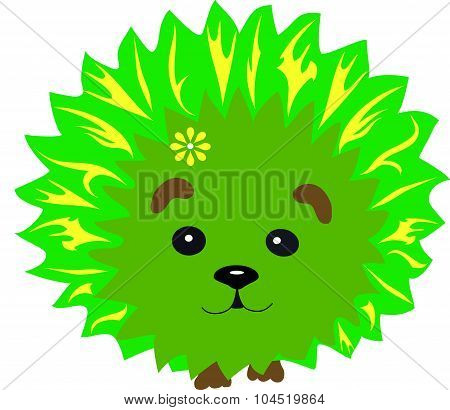hedgehog green
