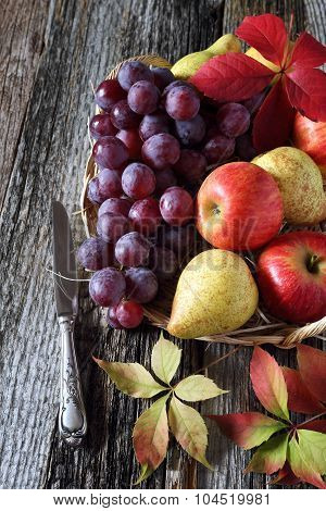 Autumn Fruit-piece With Fruits