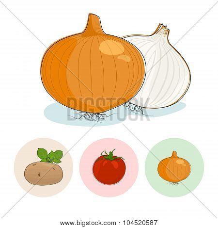 Icons Onion,Tomatoes, Potato