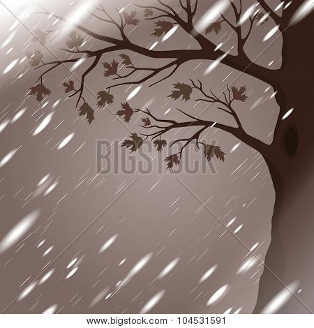 Autumn rain with tree silhouette