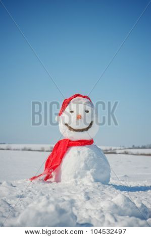 snowman look in sky and wait spring