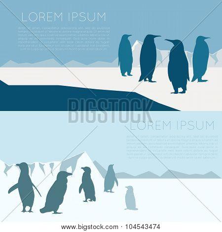 Antarctic banner