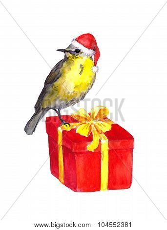Bird in red santa hat on red christmas present box. Watercolor