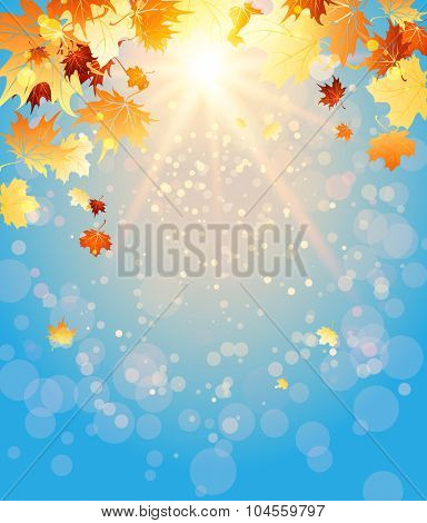 Fall light background with place for text