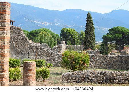 A view into a garden of Pompeii