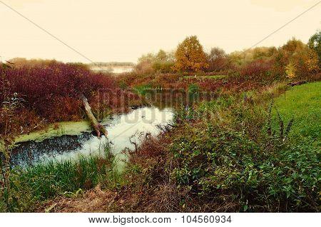 Autumn Cloudy Landscape, Vintage Colors