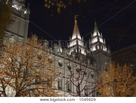 Salt Lake Temple Partial South Side At Night