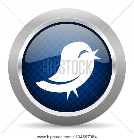 blue circle glossy web icon on white background, round button for internet and mobile app