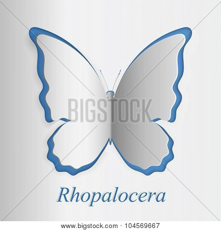 3D Papercut Butterfly In Blue And White Colors. Latine Name Rhopalocera Is Added.