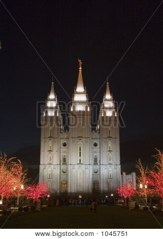 Salt Lake Temple East Side At Christmas