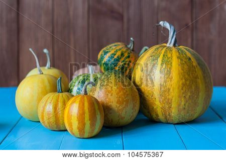 Rustic autumn still life with pumpkins on wooden surface. Bright pumpkin set